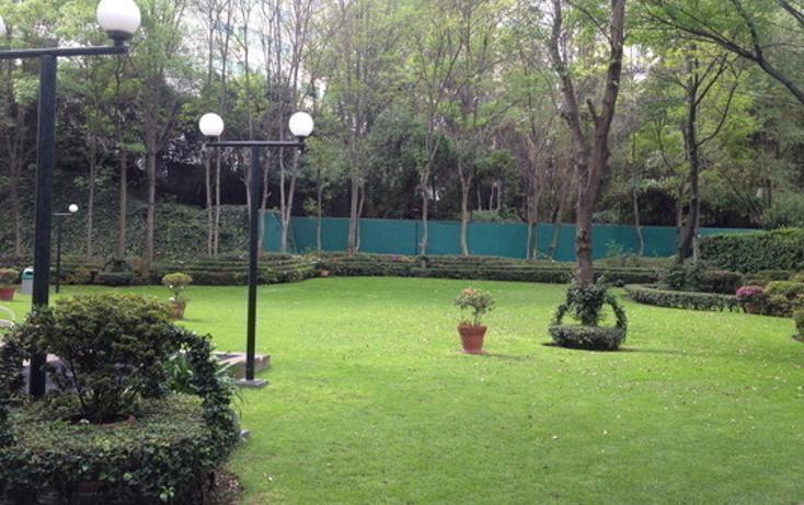 Foto de departamento en venta en  , lomas de chapultepec ii sección, miguel hidalgo, distrito federal, 456627 No. 06