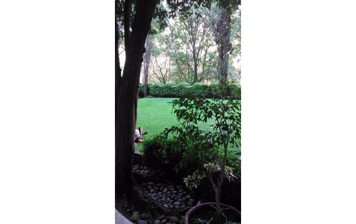Foto de departamento en renta en  , lomas de chapultepec iv sección, miguel hidalgo, distrito federal, 1972840 No. 06