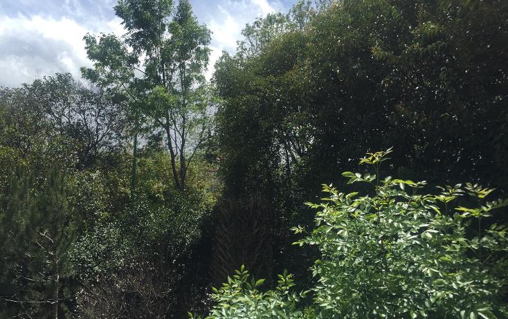 Foto de casa en venta en  , lomas de chapultepec v sección, miguel hidalgo, distrito federal, 1253495 No. 01