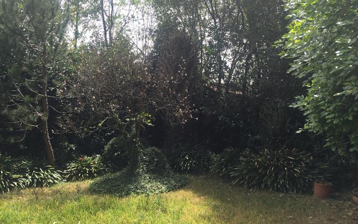 Foto de casa en venta en  , lomas de chapultepec v sección, miguel hidalgo, distrito federal, 1253495 No. 03
