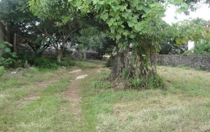 Foto de terreno comercial en venta en, lomas de cortes, cuernavaca, morelos, 1748882 no 03