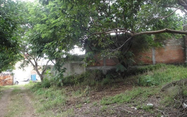 Foto de terreno comercial en venta en  , lomas de cortes, cuernavaca, morelos, 1748882 No. 04