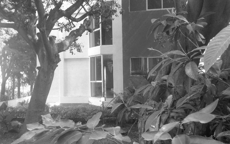 Foto de departamento en venta en  , lomas de cortes, cuernavaca, morelos, 1757052 No. 05