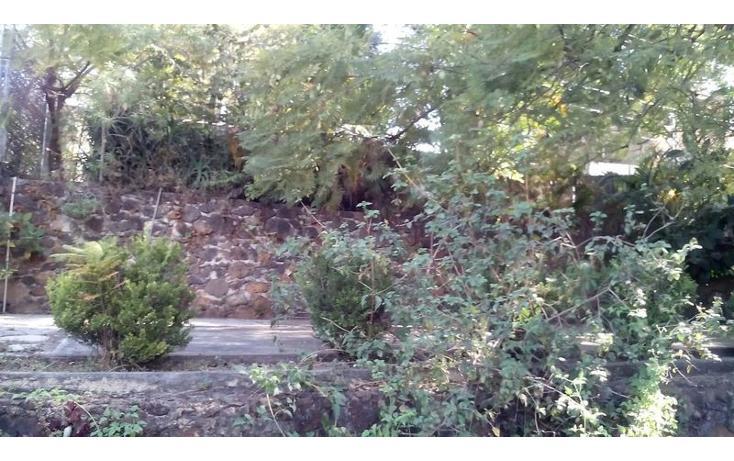Foto de terreno habitacional en venta en  , lomas de cortes oriente, cuernavaca, morelos, 1524001 No. 07