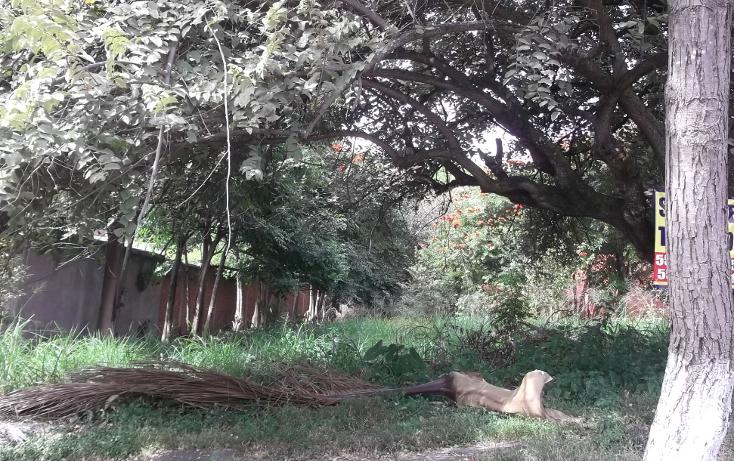 Foto de terreno habitacional en venta en  , lomas de cuernavaca, temixco, morelos, 1046151 No. 01