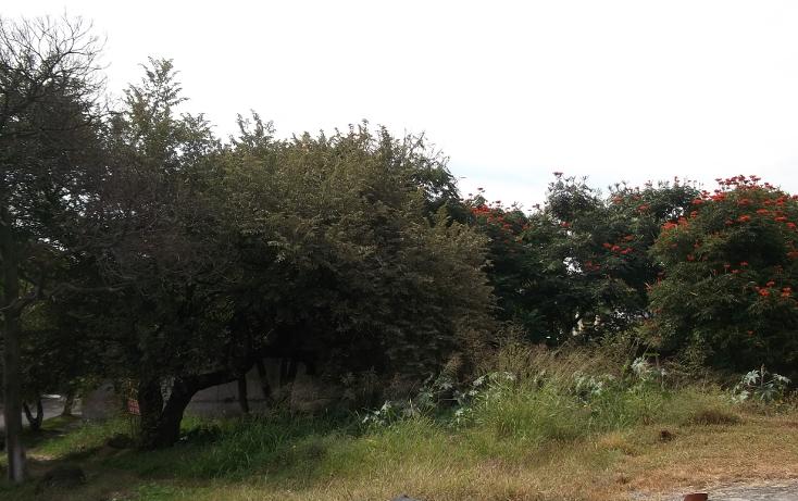 Foto de terreno habitacional en venta en  , lomas de cuernavaca, temixco, morelos, 1046151 No. 03