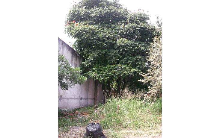 Foto de terreno habitacional en venta en  , lomas de cuernavaca, temixco, morelos, 1046151 No. 05