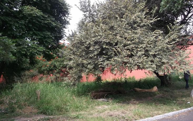 Foto de terreno habitacional en venta en  , lomas de cuernavaca, temixco, morelos, 1046151 No. 06