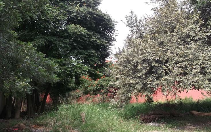 Foto de terreno habitacional en venta en  , lomas de cuernavaca, temixco, morelos, 1046151 No. 07