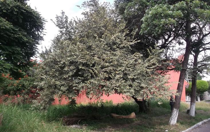 Foto de terreno habitacional en venta en  , lomas de cuernavaca, temixco, morelos, 1046151 No. 08
