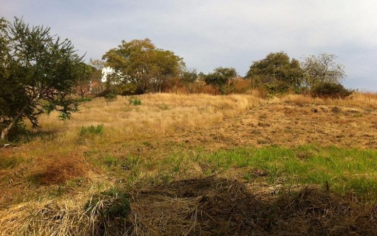 Foto de terreno habitacional en venta en  , lomas de cuernavaca, temixco, morelos, 1856954 No. 03