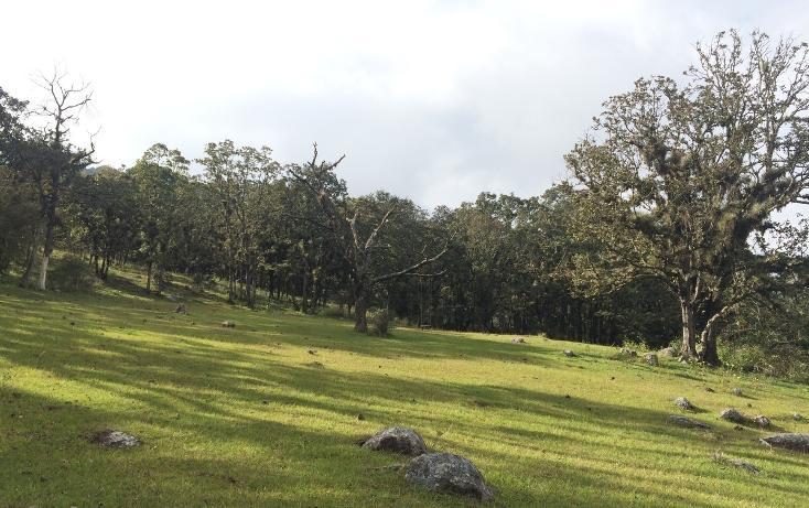 Foto de casa en venta en  , lomas de huitepec, san cristóbal de las casas, chiapas, 1847390 No. 03