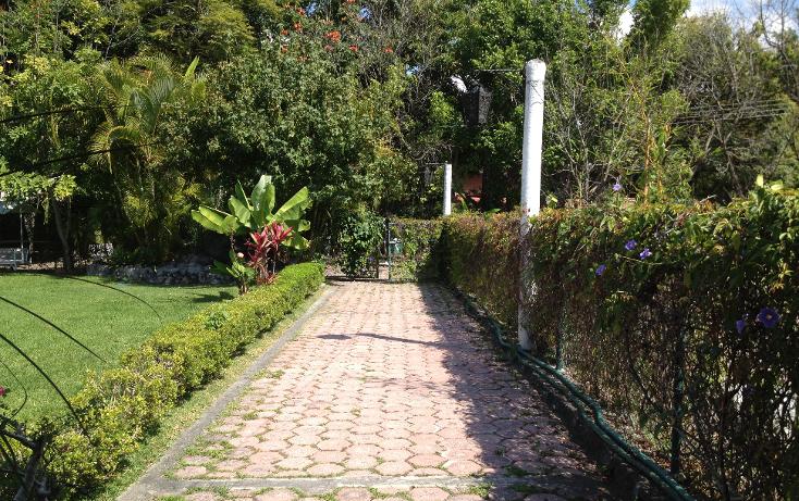 Foto de casa en venta en  , lomas de jiutepec, jiutepec, morelos, 1252297 No. 06