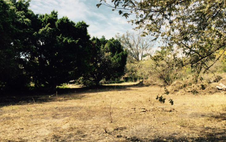 Foto de terreno habitacional en venta en, lomas de jiutepec, jiutepec, morelos, 1753524 no 03