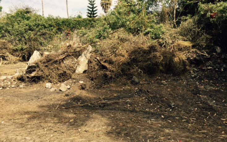Foto de terreno habitacional en venta en, lomas de jiutepec, jiutepec, morelos, 1753524 no 05