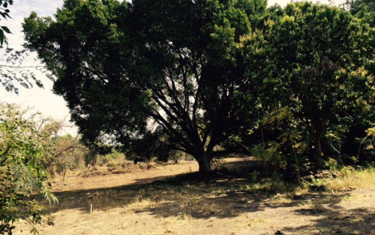 Foto de terreno habitacional en venta en, lomas de jiutepec, jiutepec, morelos, 1753524 no 07