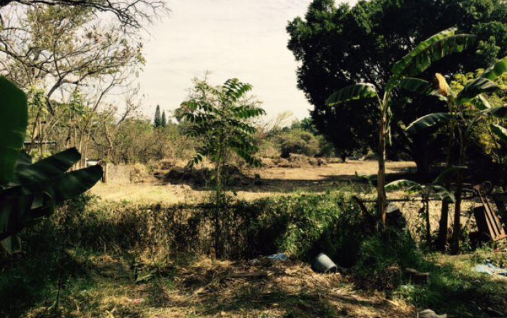 Foto de terreno habitacional en venta en, lomas de jiutepec, jiutepec, morelos, 1753524 no 13
