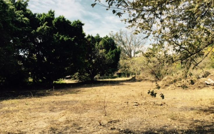 Foto de terreno habitacional en venta en, lomas de jiutepec, jiutepec, morelos, 2025737 no 02