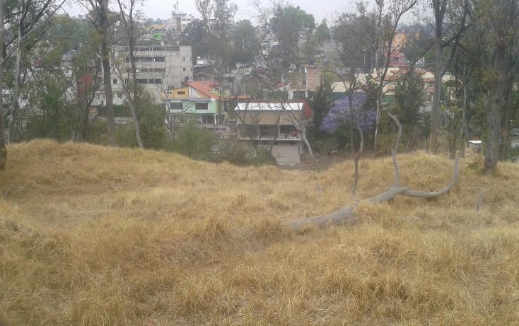 Foto de terreno habitacional en venta en  , lomas de san ángel inn, álvaro obregón, distrito federal, 1466981 No. 02