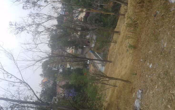 Foto de terreno habitacional en venta en  , lomas de san ángel inn, álvaro obregón, distrito federal, 1466981 No. 03