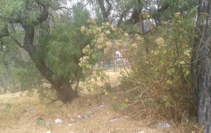Foto de terreno habitacional en venta en  , lomas de san ángel inn, álvaro obregón, distrito federal, 1466981 No. 05