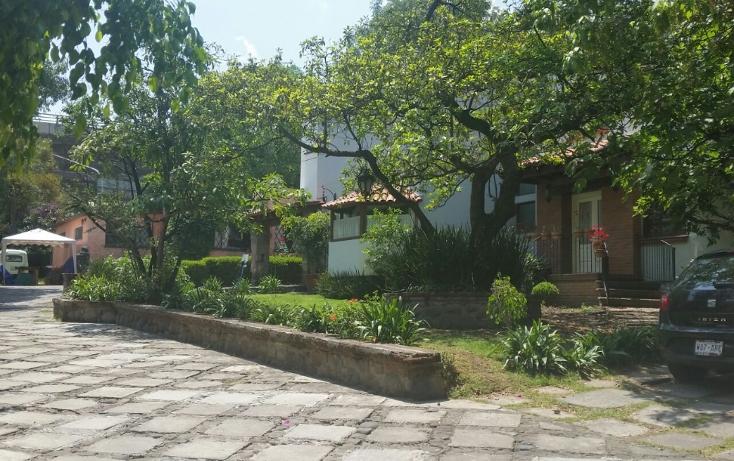 Foto de casa en venta en  , lomas de san ángel inn, álvaro obregón, distrito federal, 1865934 No. 05