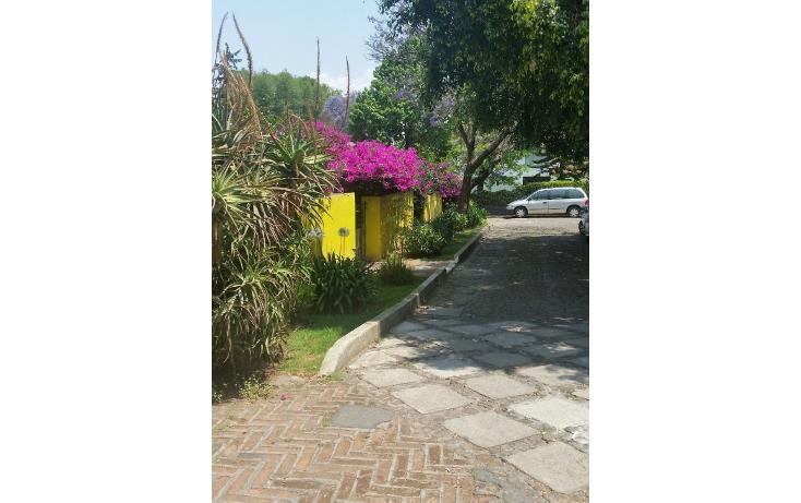 Foto de casa en venta en  , lomas de san ángel inn, álvaro obregón, distrito federal, 1865934 No. 06