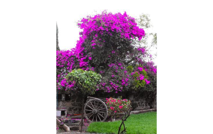 Foto de terreno habitacional en venta en  , lomas de san esteban, texcoco, méxico, 1974427 No. 01