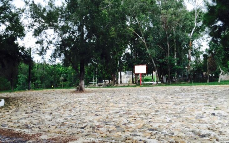 Foto de terreno habitacional en venta en  , lomas de santa anita, tlajomulco de z??iga, jalisco, 1166659 No. 05