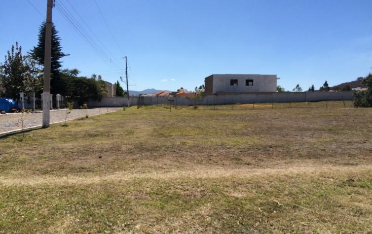 Foto de terreno habitacional en venta en  , lomas de santa anita, tlajomulco de zúñiga, jalisco, 1252675 No. 01
