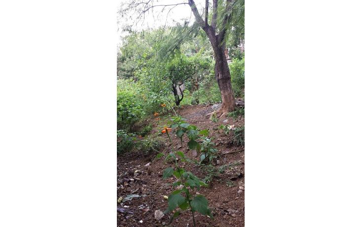 Foto de terreno habitacional en venta en  , lomas de santa rosa, oaxaca de juárez, oaxaca, 599187 No. 03