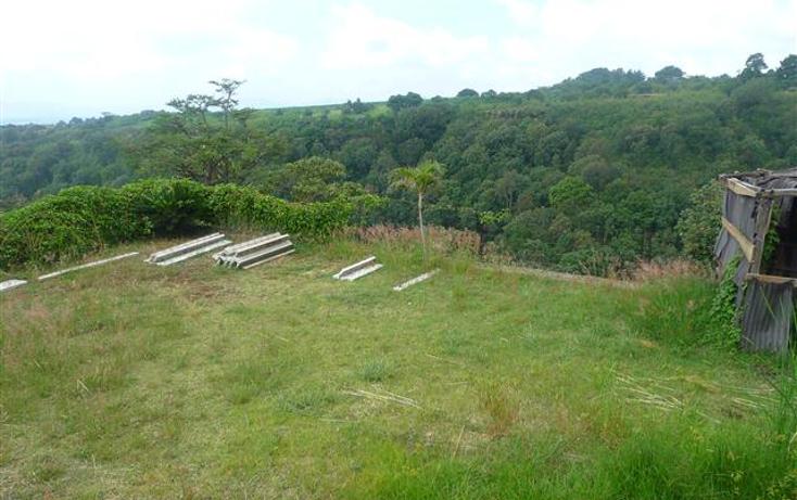 Foto de terreno habitacional en venta en  , lomas de tetela, cuernavaca, morelos, 1248387 No. 01