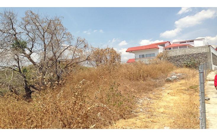 Foto de terreno habitacional en venta en  , lomas de tetela, cuernavaca, morelos, 1298085 No. 07