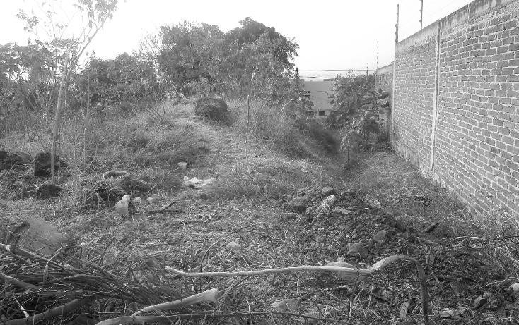 Foto de terreno comercial en venta en  , lomas de trujillo, emiliano zapata, morelos, 1207165 No. 03