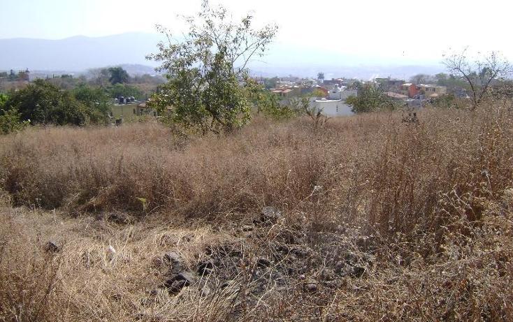 Foto de terreno habitacional en venta en lomas de trujillo , lomas de trujillo, emiliano zapata, morelos, 1581536 No. 05