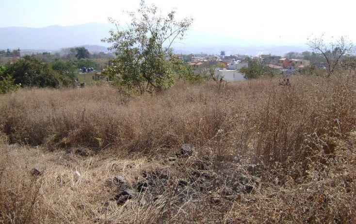 Foto de terreno habitacional en venta en lomas de trujillo, lomas de trujillo, emiliano zapata, morelos, 1581536 no 05