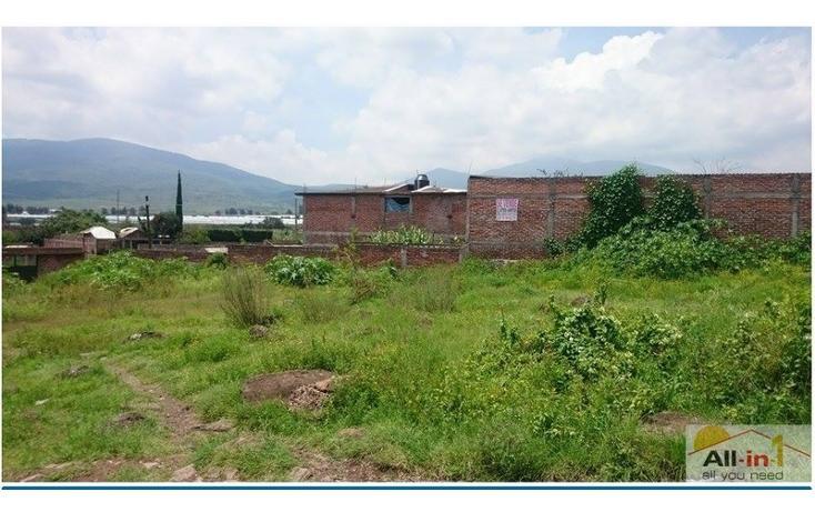 Foto de terreno habitacional en venta en  , lomas del bosque, jacona, michoacán de ocampo, 1548986 No. 05