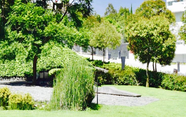 Foto de departamento en venta en  , lomas del pedregal framboyanes, tlalpan, distrito federal, 2020495 No. 06