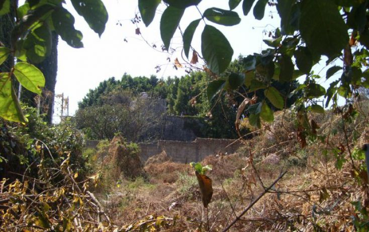 Foto de terreno habitacional en venta en, lomas del pinar, cuernavaca, morelos, 1296089 no 03