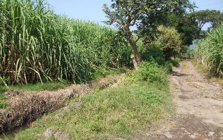 Foto de terreno comercial en venta en  , lomas del potrero, yautepec, morelos, 1080349 No. 04