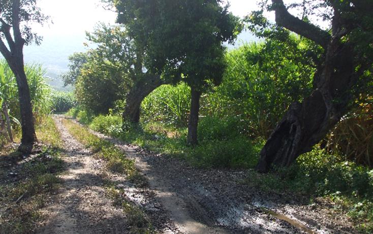 Foto de terreno comercial en venta en  , lomas del potrero, yautepec, morelos, 1080349 No. 05