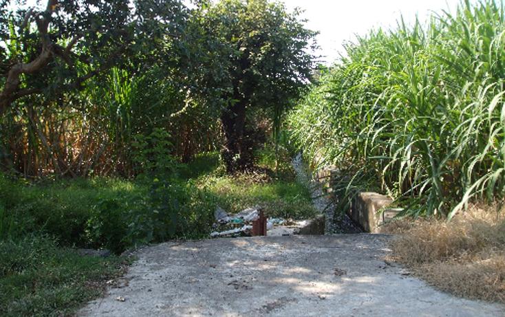 Foto de terreno comercial en venta en  , lomas del potrero, yautepec, morelos, 1080349 No. 08