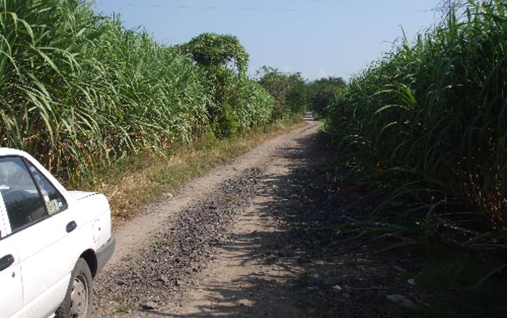 Foto de terreno comercial en venta en  , lomas del potrero, yautepec, morelos, 1080349 No. 09