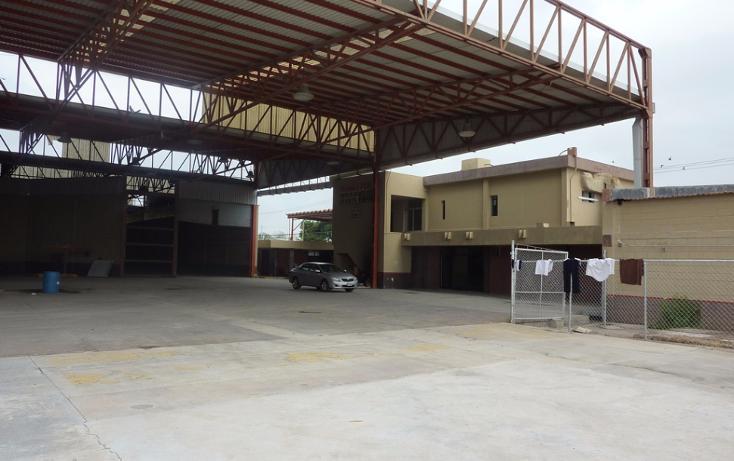 Foto de edificio en venta en  , longoria, reynosa, tamaulipas, 1773022 No. 06