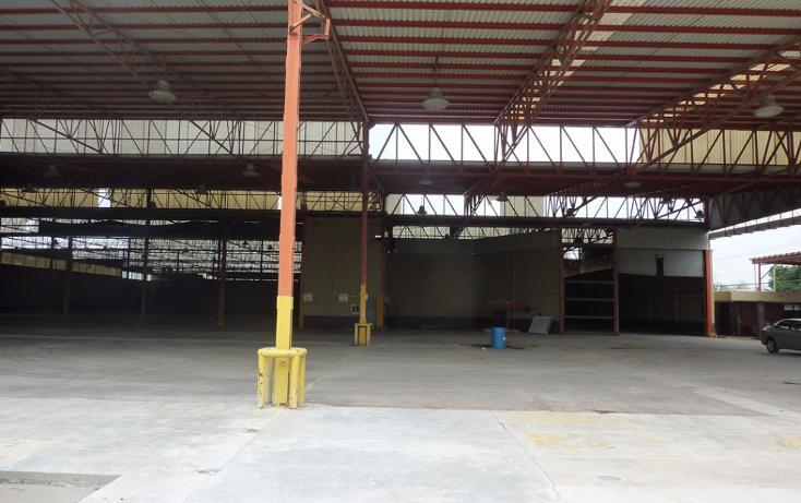 Foto de edificio en venta en  , longoria, reynosa, tamaulipas, 1773022 No. 08