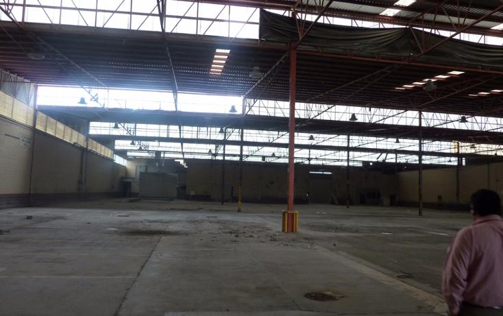 Foto de edificio en venta en  , longoria, reynosa, tamaulipas, 1773022 No. 12