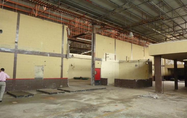 Foto de edificio en venta en  , longoria, reynosa, tamaulipas, 1773022 No. 16