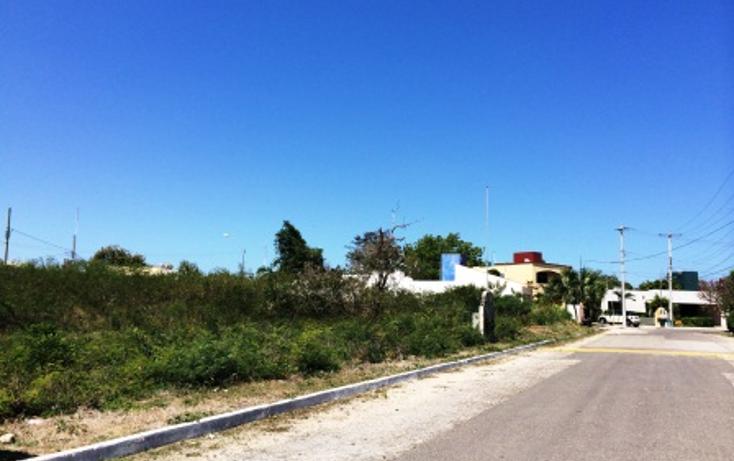 Foto de terreno habitacional en venta en  , los ?lamos, m?rida, yucat?n, 1145365 No. 12