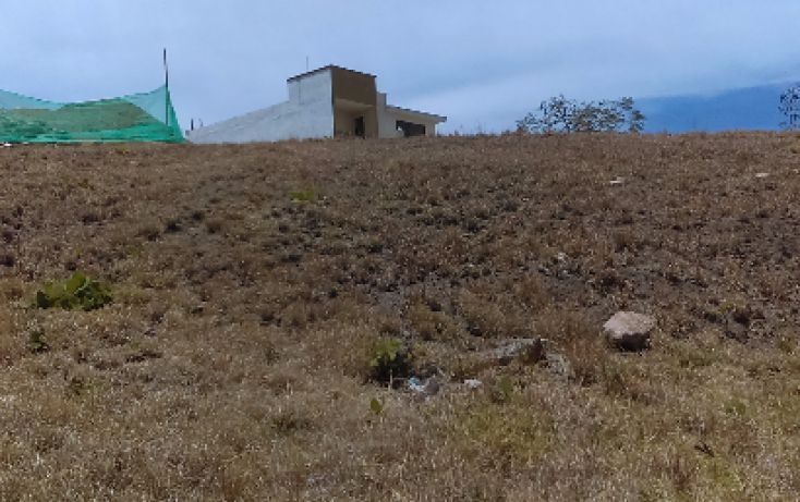 Foto de terreno habitacional en venta en, los álamos, tlajomulco de zúñiga, jalisco, 1760818 no 02