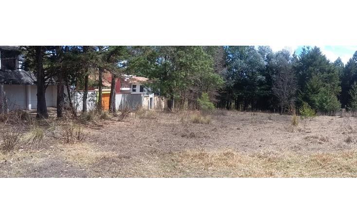 Foto de terreno comercial en venta en  , los alcanfores, san cristóbal de las casas, chiapas, 1835026 No. 02